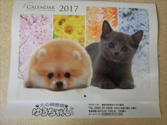2016-10-31cimg9490_r